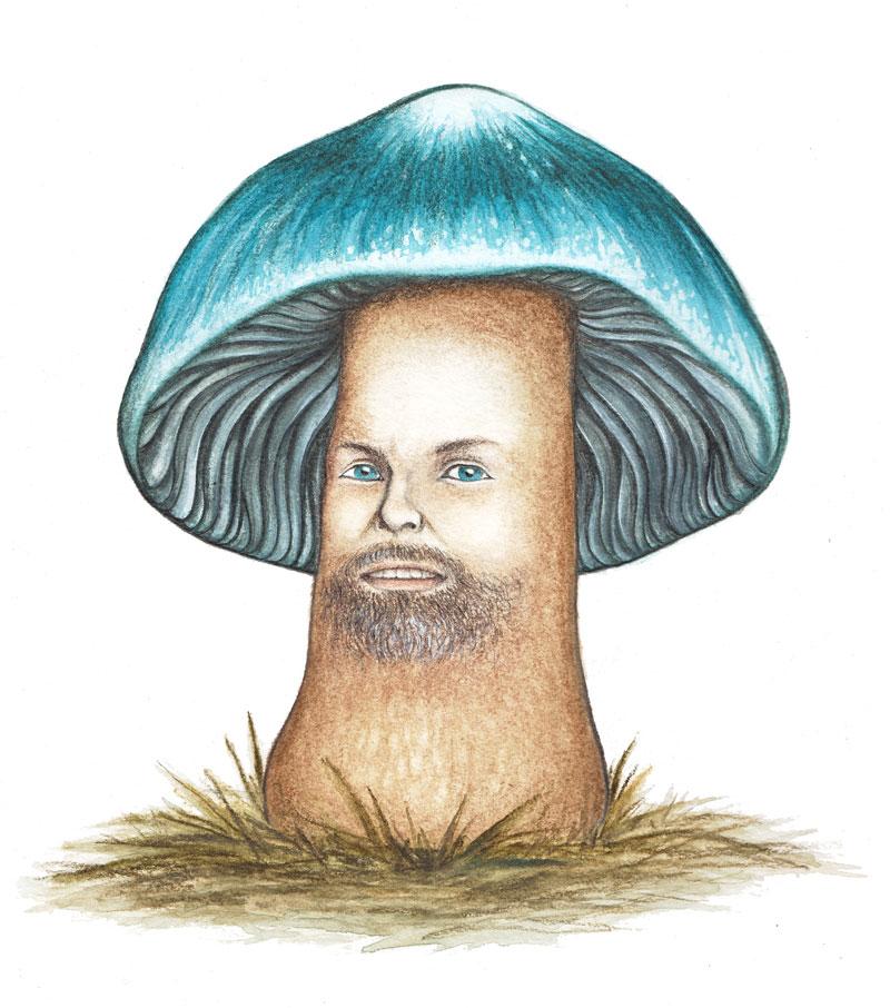jeff_mushroom